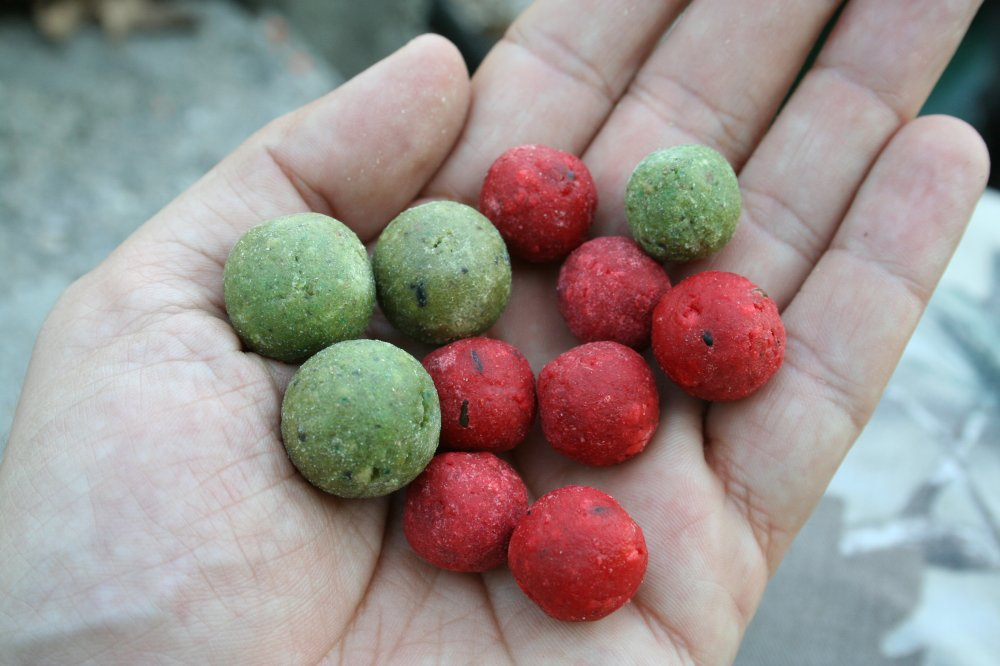 boilies dumbell