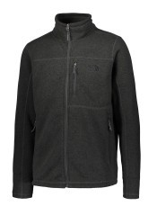 Polaire homme North Face Gordon Lyons FZ gris avant