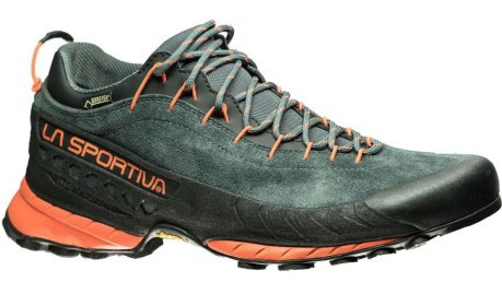 Mens shoes TX4 GTX Approach