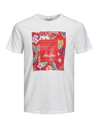 T-shirt Uomo Tropicana