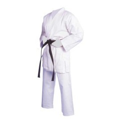 Karategi Bushido