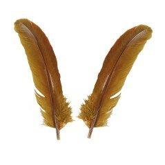 piume ali di Tacchino Nero