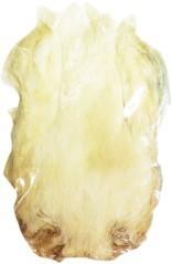 Collo di gallina eco bianco