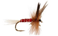 Mosca Red Spinner rosso