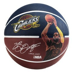 Pallone LeBron James