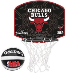 Canestro Chicago Bulls NBA