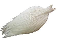 Collo Rooster Prograde bianco