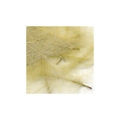 Piume CDC Feathers 1 gr beige