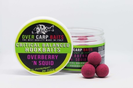 hookbaits Overberry N' Squid 20 mm